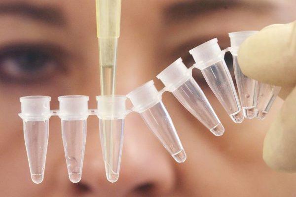 Anyasági és apasági DNS-tesztelés